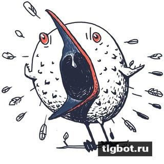 Бото: установить телеграм бота