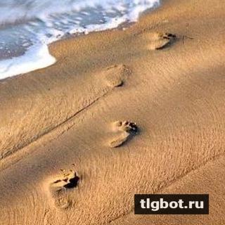 Trackway: установить телеграм бота