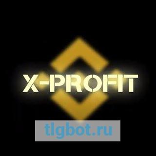 X51 PROFIT